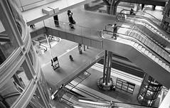 the maze of Berlin Hauptbahnhof (Lauzi007) Tags: bw berlin film 35mm iso800 march hauptbahnhof hp5 pentaxmx 2016