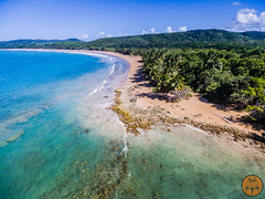 Corredor del Ecolgico del Noreste (JavierVazquez) Tags: puertorico fajardo luquillo