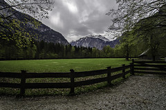 green field at Alps (szlavid) Tags: lake alps nature water germany landscape berchtesgaden nikon knigsee d7000