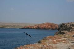 IMG_7633 (chupalo) Tags: lavarocks islasplaza
