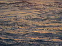 Sunset light reflects on Ocean Water (Eric Broder Van Dyke) Tags: ocean light sunset water waves with rolling reflects