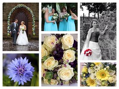 Wedding Bouquets & Flowers (Sam Rigby Photo) Tags: rose square groom bride bridesmaids squareformat bouquet weddingflowers gerberas weddingphotographer bridalbouquet flowerarch femaleweddingphotographer iphoneography instagramapp