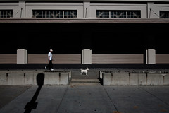 claim contributions (bhautik joshi) Tags: sf sanfrancisco california street people dog walking us waterfront unitedstates walk candid streetphotography pedestrian sidewalk embarcadero bayarea pedestrians fromthehip theembarcadero sfist pier24 bhautikjoshi
