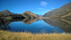 Moke Lake Taniwha (PalmyLisa) Tags: morning newzealand fog early ducks queenstown benlomond lakewakatipu mokelake