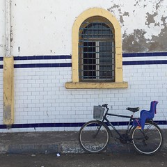 Essaouira (yaelgasnier) Tags: travel square colorfull morocco squareformat maroc marrakech marruecos essaouira velo vlo marokko bycicle  wonderfulplaces   shotaward vsco beautifuldestinations iphoneography instagramapp instamorocco igworldclub iphone6plus marocphotonet