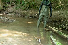 IM006845 (hymerwaders) Tags: rot water boots thigh overknee waders abuse wrecking stiefel watstiefel