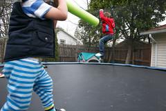 20160428_60144 (AWelsh) Tags: boy evan ny boys kids children fun kid twins child play joshua jacob twin trampoline rochester elliott andrewwelsh 24l canon5dmkiii