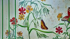 The Color Paprika (BKHagar *Kim*) Tags: flowers orange color floral vintage butterfly spice plastic tray paprika challenge reddish bkhagar julesphotochallengegroup