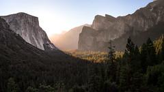 Yosemite (Zach Tyler) Tags: park blue trees sun mountains nature sunrise canon landscape national yosemite elcapitan