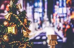 #danbo #danboard #christmas #christmastree #night #toy #toyphotography #light #lights #bokeh #beautiful #ktpics #merrychristmas #ダンボー #クリスマス #cute #nights #hello #check #christmas #light #lights (KT.pics) Tags: hello christmas light cute beautiful night toy lights check bokeh christmastree nights merrychristmas クリスマス danbo toyphotography danboard ダンボー instagram ktpics instagood
