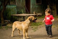 Mateo y su amigo (eladio.hurtado) Tags: friends portrait dog amigos animals kids bestfriend mejoramigo