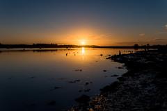 Rising Sun reflected (Nick_Rowland) Tags: winter sky reflection beach water sunrise river dawn coast suffolk woodbridge deben tidalriver riverdeben