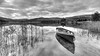 Grey Day (ABel-Photo) Tags: landscape mono scotland trossachs lochard