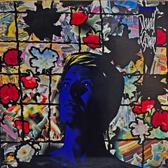 The Inimitable David Bowie (BKHagar *Kim*) Tags: bkhagar davidbowie rip inimitable musician legend artist album vinyl cover inexplore explore
