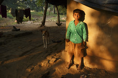 Light and life (rafimmedia Photography) Tags: light people dog india green nature kid indian hut bot goldenlight villagelife lifeatvillage