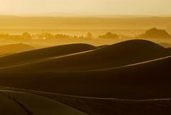 Marocco- Deserto Erg Chebbi-Tramonto (rosella sale) Tags: africa travel landscape tramonto natura marocco viaggi palme viaggio luce deserto orizzonte merzouga oasi linee ergchebbi africasettentrionale rosellasale desertoergchebbi fotorosellasale