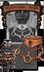 Belted Collar Scripted (XAnSA) Tags: leather 3d mesh ring rings strap harnish collar harness straps slave collars gor kajira kajiru gorean