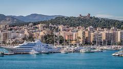 Mallorca (truszko) Tags: lady spain europe es palmademallorca balearicislands majorka moura
