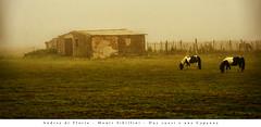 Andrea di Florio - Monti Sibillini - Due cuori e una Capanna (Andrea di Florio (5,000,000 views)) Tags: alba valle 28 montagna 70200 umbria norcia d600 panoramanikon andreadiflorio vallatanebbia