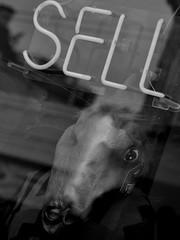 (Alexander C. Kafka) Tags: sf sanfrancisco street blackandwhite bw mannequin window store