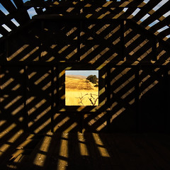 Picture Window (garshna) Tags: tree abandoned window field ruins pattern weathered deserted rafters goodnoehills