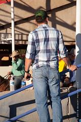IMG_2034 (DesertHeatImages) Tags: arizona horses phoenix cowboy boots barrel run bulls arena riding corona rodeo cowgirl steer bullriding regional roadrunner
