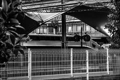 Le train captif (vedebe) Tags: bw monochrome architecture gare noiretblanc trains nb rue tgv urbain gares netb