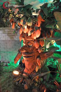 Àrvore Casa do Chocolate - Gramado - RS - Brasil