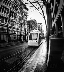 Here Comes The Train (TMimages PDX) Tags: road street city urban blackandwhite monochrome train buildings portland geotagged photography photo image streetphotography rail streetscene sidewalk photograph transportation pacificnorthwest lightrail avenue vignette fineartphotography fisheyelens iphoneography mpjcameralens