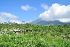 DSC_0104 (fredy_ngahu) Tags: cloud mountain nature indonesia landscape nikon outdoor yogyakarta merapi d90 fredyngahu
