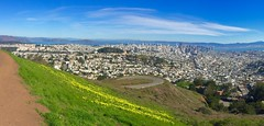 The beautiful views from Sutro Hill overlooking a balmy San Francisco (jurvetson) Tags: sanfrancisco city flowers el hills sutro scape nino warming global