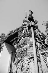The Gatekeeper (johan masia) Tags: voyage travel viaje blackandwhite bw monument statue thailand temple nikon asia noiretblanc bangkok nb bn thai asie wat thailandia statua viaggio aps biancoenero thailande tempio apsc nngc d7000