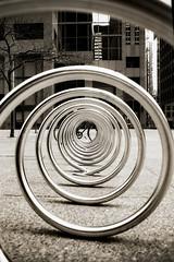 Trip to Toronto (Gary Calv) Tags: blackandwhite bw 35mm nikon 35mmfilm fujifilm nikkor f5 acros filmphotography nikonf5 20mmf28
