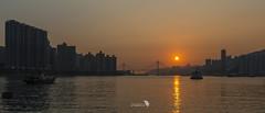 _DSC1074_219_LOGO (Ray 'Wolverine' Li) Tags: city sunset sea sun nature hongkong pier asia nightscene nightview