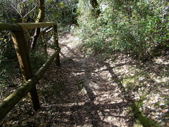 2016.02.21_OlhosAgua_Alcanena_1920x_053 (PatricioDomingues) Tags: portugal water gua olhosdeagua alviela 20160221