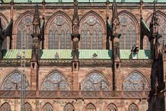 Strasbourg (Drics67) Tags: france strasbourg cathdrale alsace ville gargouille notredamedestrasbourg