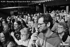 2016 Bosuil-Het publiek bij The Paladins en Cats on the Corner 15-ZW