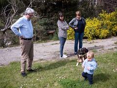 Promenade sur l'herbe (Dahrth) Tags: baby grass garden lumix raw jardin littleboy bb pelouse herbe gf1 petitgaron micro43 panasoniclumixgf1 20mmpancake gf120 microquatretiers