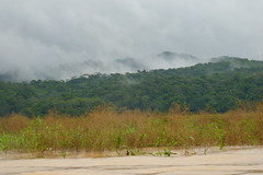 Rainy Season in the Jungles of Panama (Joseph Hollick) Tags: jungle panama embera emberaindians