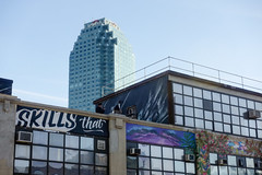 Top to Bottom building in LIC (nicknormal) Tags: street streetart newyork art graffiti us unitedstates bluesky queens longislandcity citi toptobottom artsorgnyc