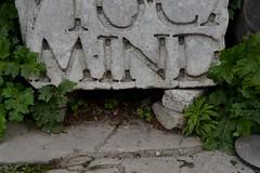 never mind (Gaia Boneschi) Tags: italy never rome roma green grass greek ancient nikon ruins italia roman colosseum mind latin nikkor nevermind foriimperiali fori colosseo imperiali rovine nikon5200 nikonitalia nikond5200 whatitalyis