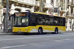 AUTOBÚS MAN - 7401 HZF - TUSGSAL - B20 - 576 (Yeagov_Cat) Tags: barcelona man bus catalunya tusgsal b20 autobús 2016 576 rondasantpere rondadesantpere mana21 transportsurbansiserveisgeneralssocietatanònimalaboral mannlxx3lionscity 7401hzf