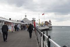 Brighton Pier, Brighton, United Kingdom (Tiphaine Rolland) Tags: uk greatbritain sea england mer water sussex pier seaside eau brighton unitedkingdom south gb angleterre amusementpark funfair channel manche sud jetée seasideresort brightonpier 2016 balnéaire royaumeuni grandebretagne borddemer parcdattractions citébalnéaire