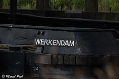 Biesbosch - Noorwaard polder (CapMarcel) Tags: polder biesbosch noordwaard
