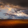 #Clouds (Adelino Goncalves) Tags: trees light cold color field clouds landscape evening countryside earth gloucestershire ericgoncalves