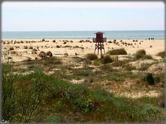 Playa de la Bota (Huelva) (Spain) (sky_hlv) Tags: espaa praia beach andaluca spain europa europe huelva playa atlanticocean oceano costadelaluz puntaumbra labota oceanoatlntico playadelabota