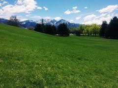 view (Alexey Tyudelekov) Tags: utah usa 2016 us saltlakecity park view green grass mountains