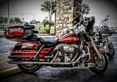 Sper Bike (Carlos Ramirez Alva) Tags: street bike calle florida harley harleydavidson moto motorcycle daytona davidson eeuu