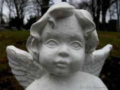 Woodlawn Cemetery (Gerri Gray Photography) Tags: newyork cemetery grave graveyard statue female angel religious death memorial cherub gravestone mementomori syracuse winged tombstones woodlawn gravemarker taphophilia