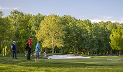 For par (Predrag Drobac) Tags: trees playing game sports nature grass sport golf ada spring outdoor belgrade beograd par